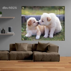 תמונה של גור כלבים