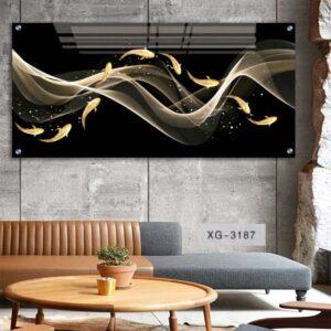 תמונה של דגים זהב שחור